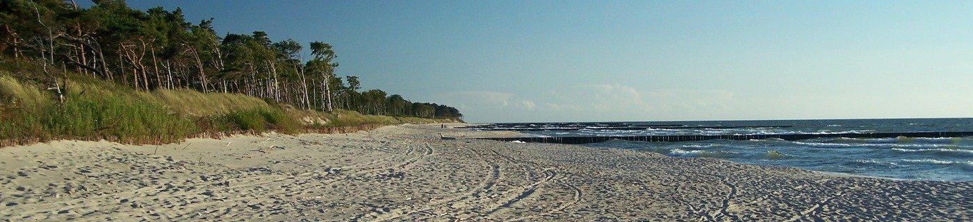 wakacyjna plaża w wicie