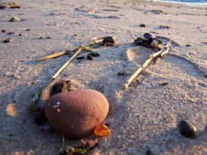 bursztynek na plaży