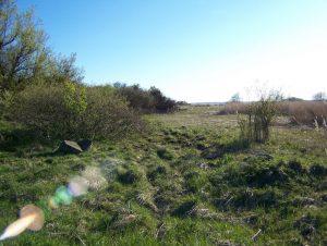 teren po dawnej osadzie
