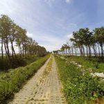 droga do Darłówka