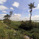 krajobrazy jeziora kopań