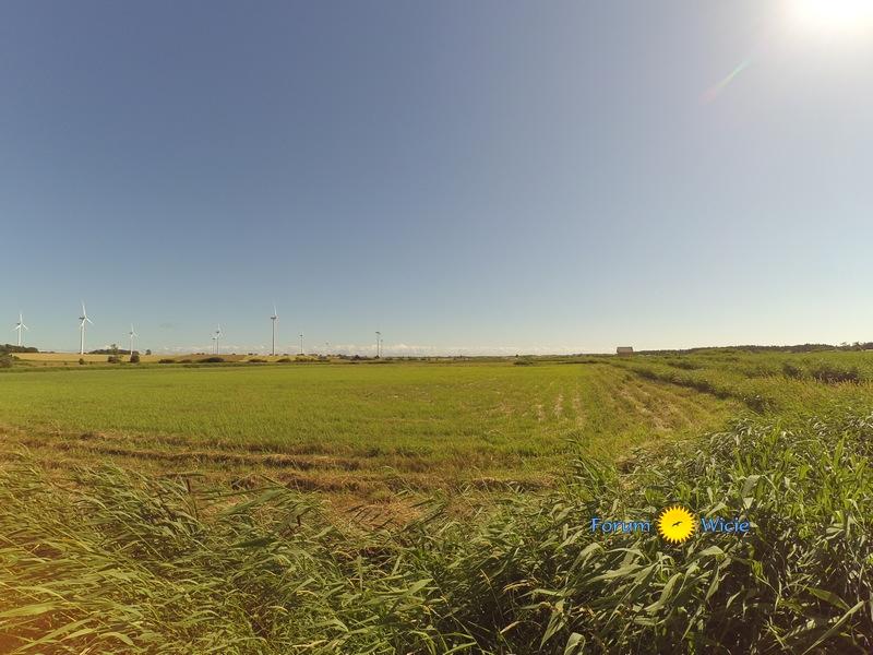 pola i łąki przy wsi Kopań nad morzem